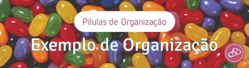 Pílulas de Organização – Qual o Exemplo de Organização?