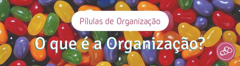 Pílulas de Organização – O que é a Organização?