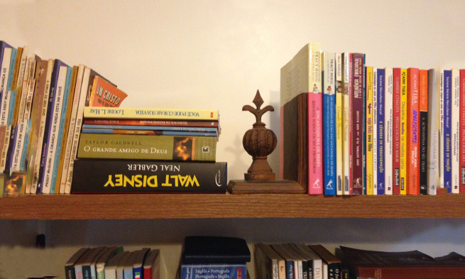 Como Organizar Livros