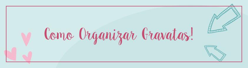 Como Organizar Gravatas – Colmeias