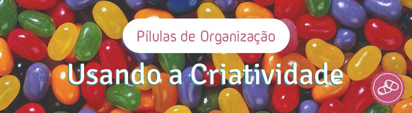 Pílulas de Organização – Nossa Capacidade de Criar